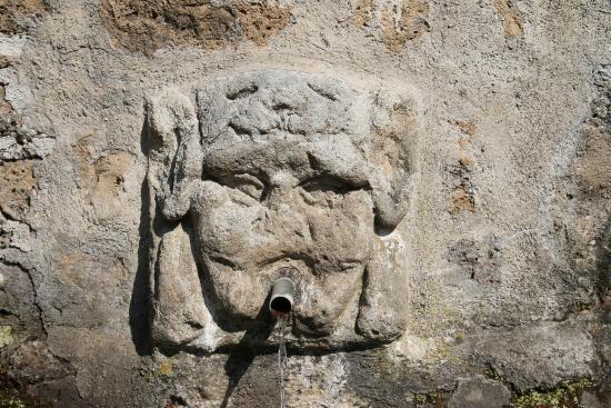 Fonte dell'Olmo, Vie Cave Etrusche