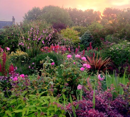 Islandmagee, UK: The Autumn Bed In August