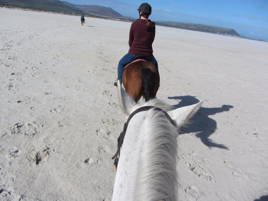Sleepy Hollow Horse Riding On Long Beach Noordhoek