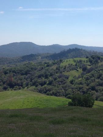 Yosemite Ziplines and Adventure Ranch: Amazing View of Mariposa area