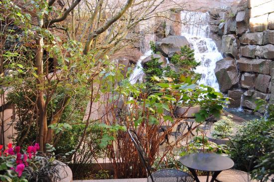 Falls Picture Of Waterfall Garden Park Seattle Tripadvisor