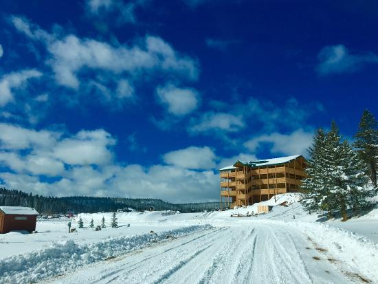 Duck Creek Village, UT: Winter Wonderland outside the Lodge.