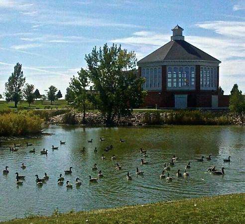Redlin Art Center : The park around the Redlin Museum is wonderful.
