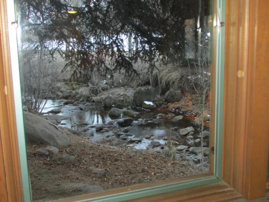 Four Mile Creek Bed and Breakfast: Creek view from window