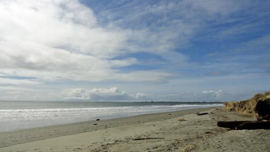 Damon Point in Ocean Shores, WA