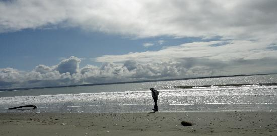 Ocean Shores, WA: Damon Point Beach