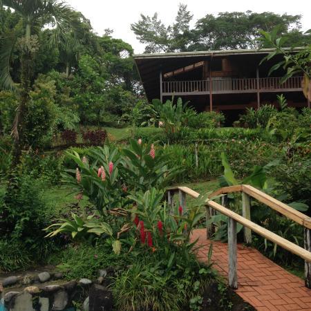 Finca Luna Nueva Lodge-billede