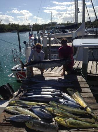 Hope Town, Elbow Cay: A recent day's catch!