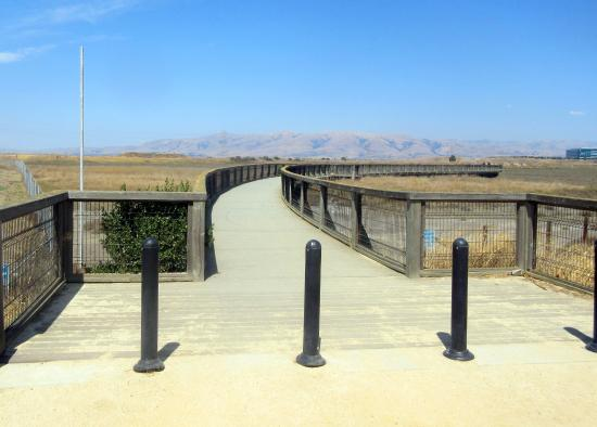 Sunnyvale Bay Trail