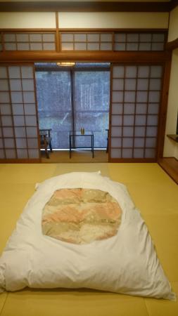 Katsuragi: DSC_0535_large.jpg
