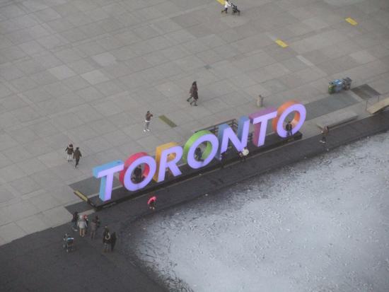 Sheraton Centre Toronto Hotel: View from hotel room of City Hall plaza