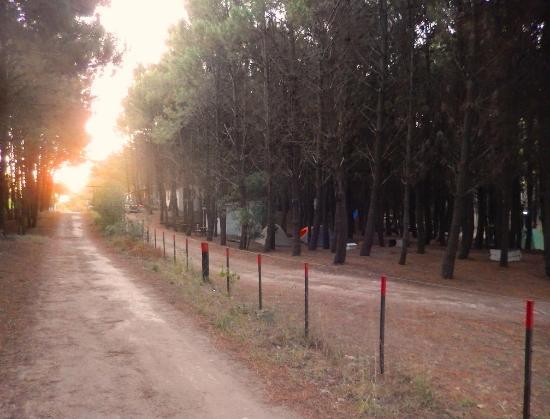 Camping Peloponeso - Balneario Orense