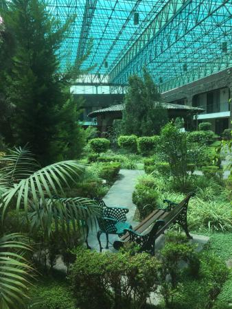 Radisson Del Rey Toluca : Jardin interior