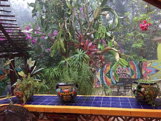Villa ZenaLiza: Garden