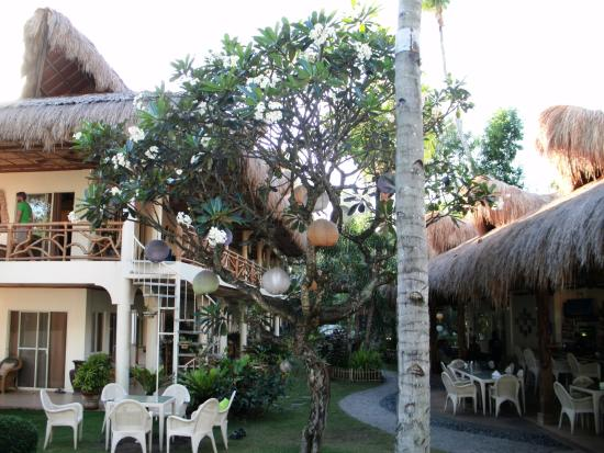 Mike's Dauin Beach Resort: Hermoso lugar!!