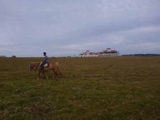إستانسيا فيك خوسيه إجناسيو: horse with hotel in the distance