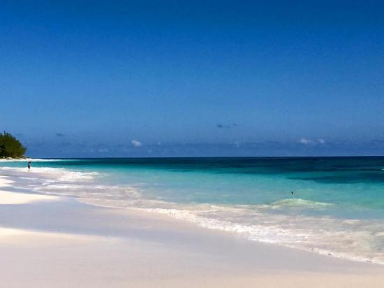 the beautiful pink sand beach lighthouse picture of princess rh tripadvisor co za