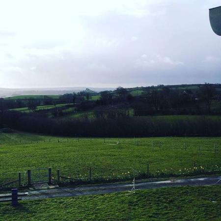 Broadwindsor, UK: From my room