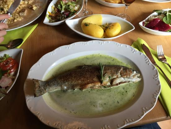 Spalt, Alemania: Forelle!!!