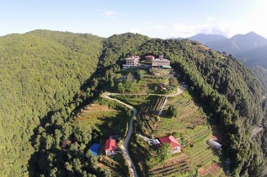 Pataleban Vineyard Resort : Resort