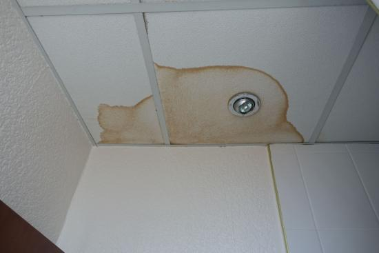 Regal Hotel: The stain on the ceiling of the en-suite.