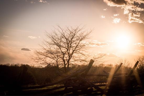 Sharpsburg, MD: Antietam Battlefield at sunset 3-18-2016