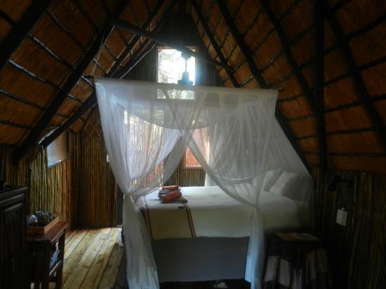 Foto de Pezulu Tree House Game Lodge