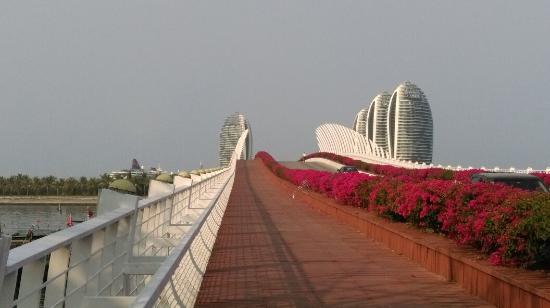 Sanya, China: IMAG6573_large.jpg