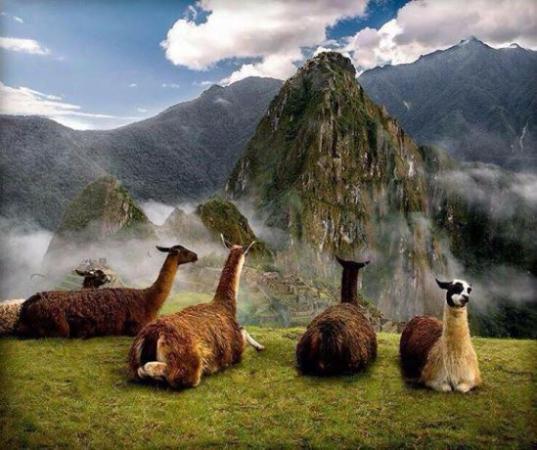 Tu Viaje Peru - Day Tour