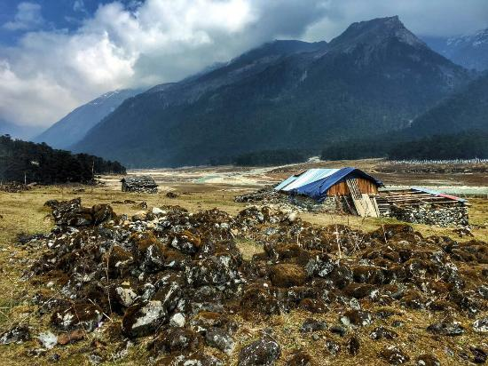 yamthang valley in april review of yumthang valley lachung india rh tripadvisor co za