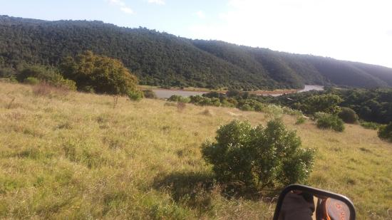 Mansfield Reserve: Beautiful views as we searched for Gambit