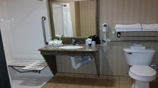 New Buffalo, MI: Guest Bathroom / Roll in Shower