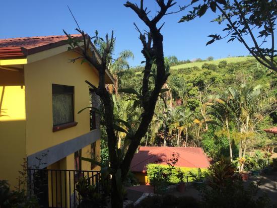 Grecia, Costa Rica: In the morning...