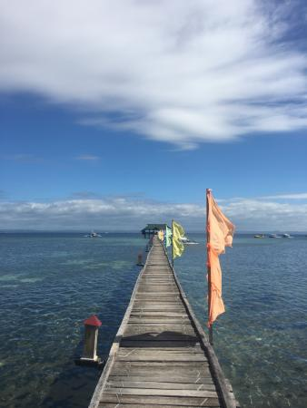 Nalusuan Island Resort Photo