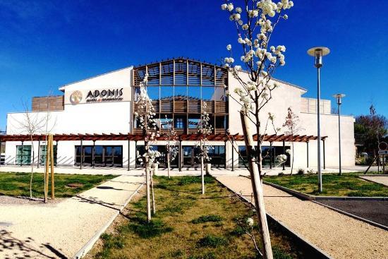 Adonis Aix-en-Provence