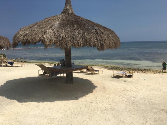 Bluewater Panglao Beach Resort: photo0.jpg