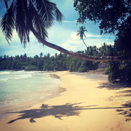 Νότια Επαρχία, Σρι Λάνκα: Our beach