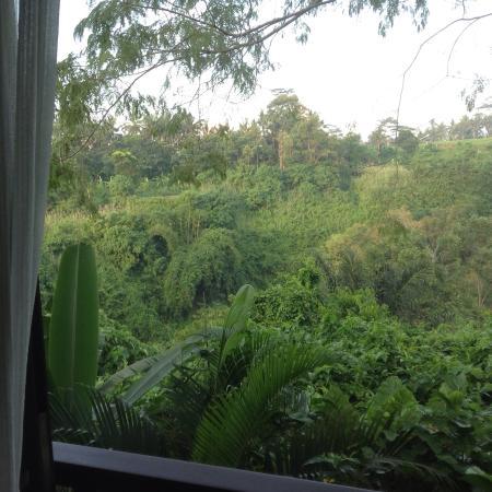 Amori Villas: photo4.jpg