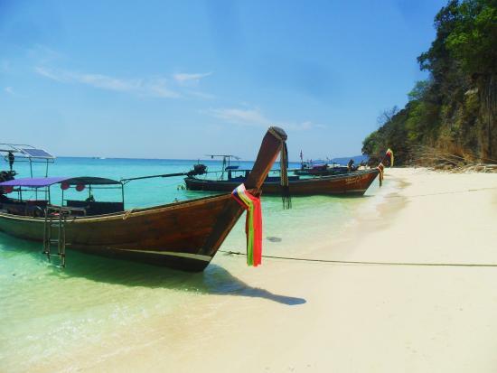 bamboo island - Picture of Bamboo Island, Ko Phi Phi Don - TripAdvisor