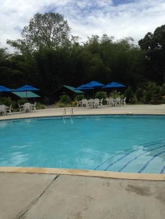 La Vega Garden Centre: Pool