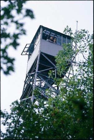 Grand Rapids, MN: Forest History Center fire tower
