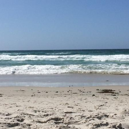 Asilomar State Beach: photo5.jpg