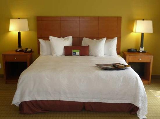 Hampton Inn Ringgold-Ft. Oglethorpe: Guest Room