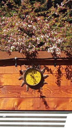 Bistro Espresso: Loved that rustic colorful clock. Was a focul point for me.