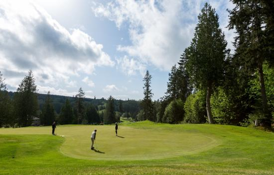 Golfers enjoying the Port Ludlow greens.