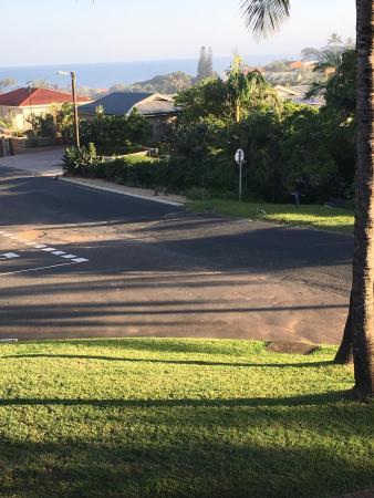 Nalson's View : photo1.jpg