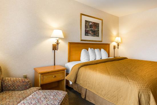 Quality Inn & Suites: King guest room