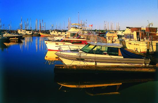 Gimli harbour