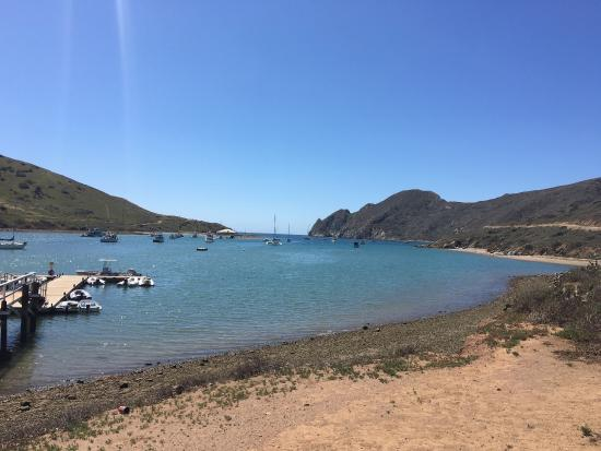 Picture of catalina coastal tours fishing for Catalina island fishing charters