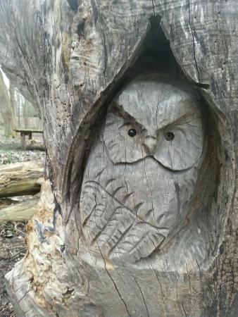 West Seneca, NY: Stump carving on the nature path.
